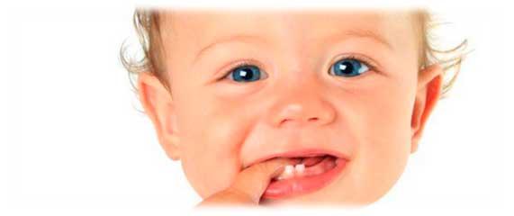 ¿Cuándo salen los dientes de leche?